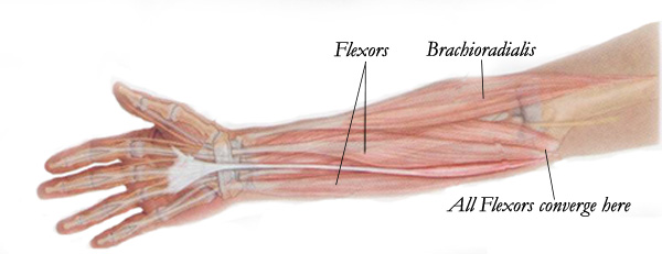 for elbow cure golfers
